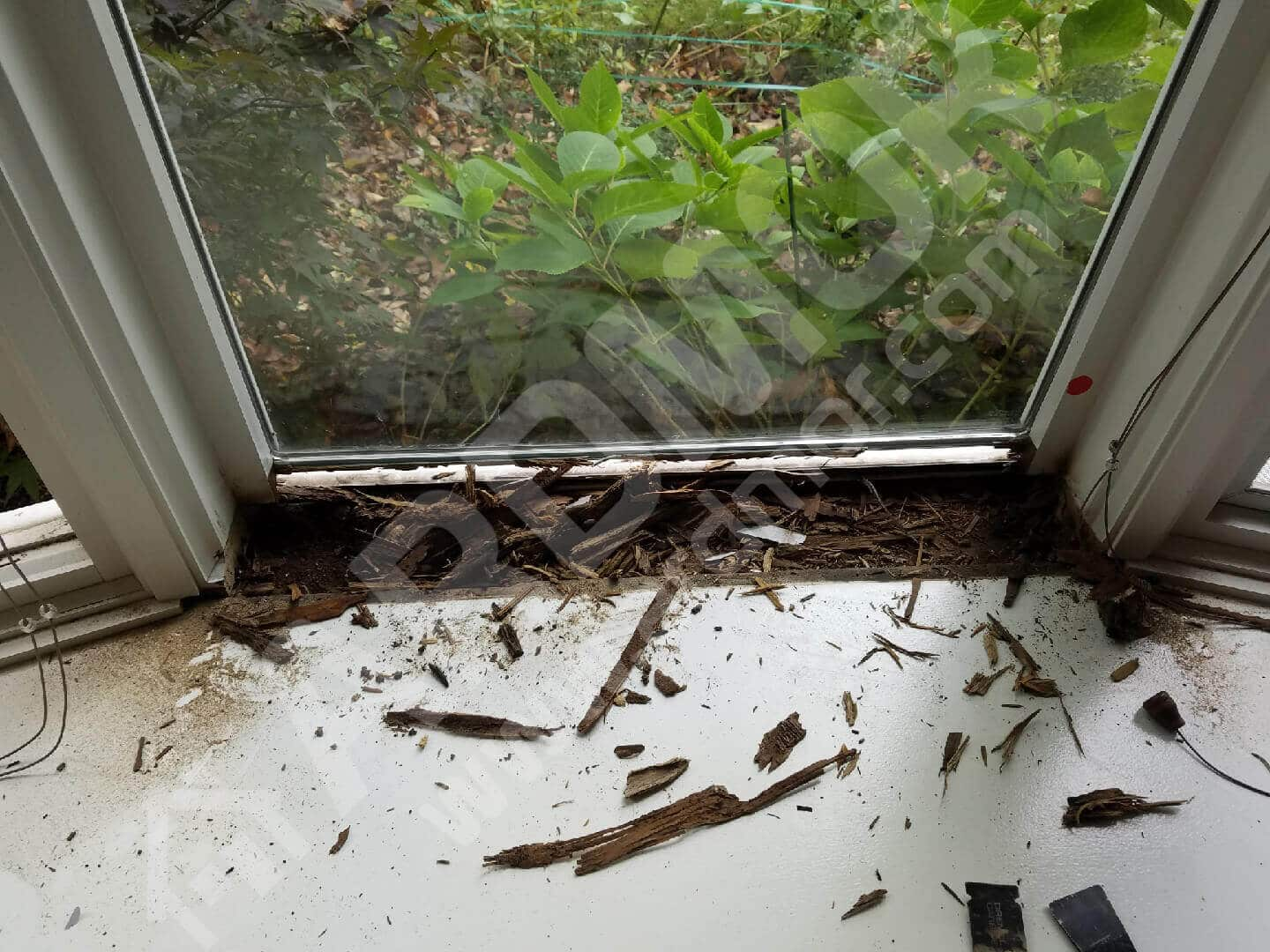 Pella Window Repair Service Casement Repairs Window