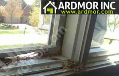 Pella Window Sash Repair